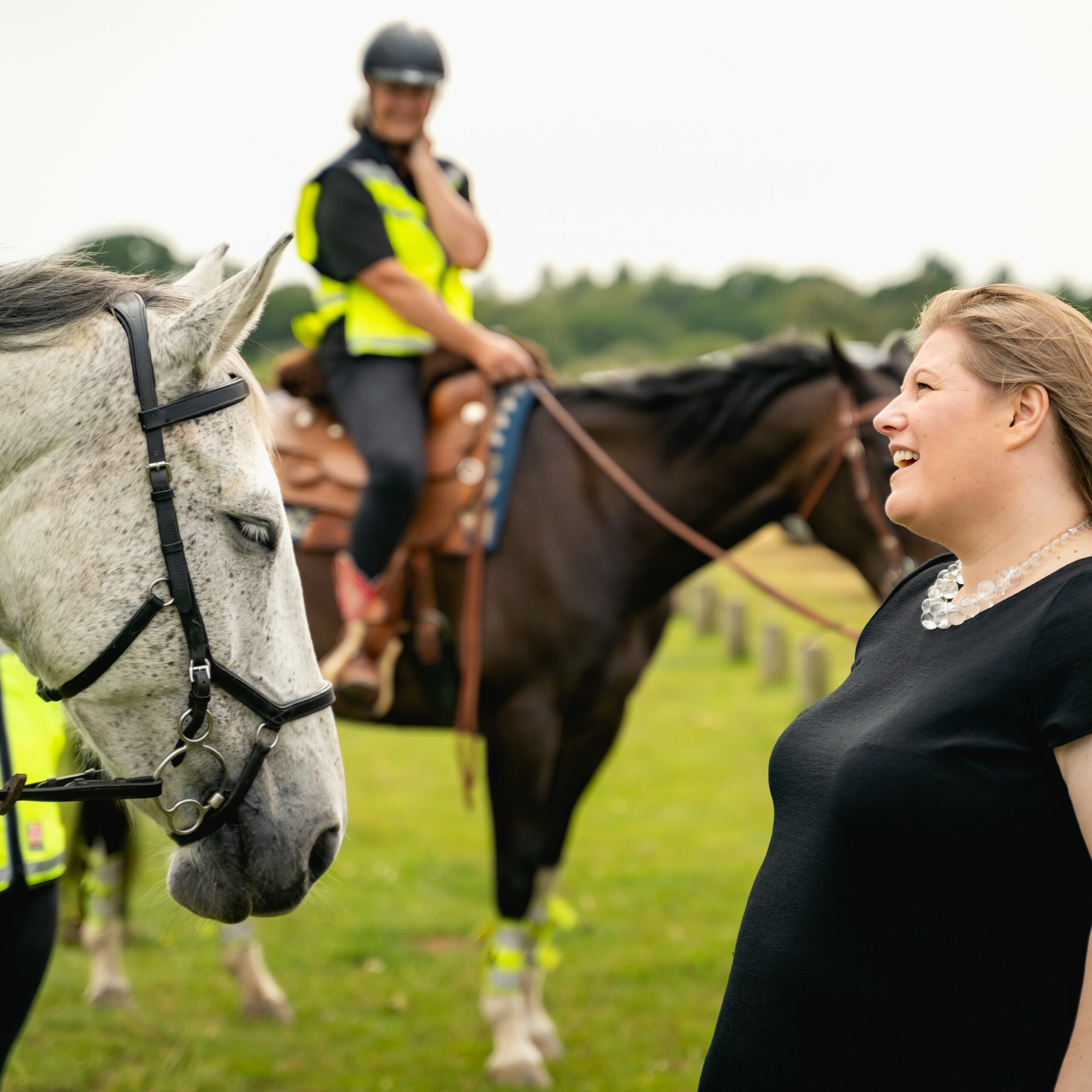 Tackling Crime and Anti-social behaviour in the New Forest